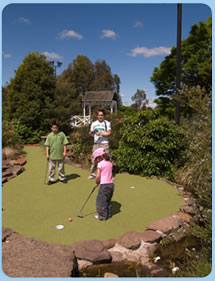 Wetlands Mini Golf - Accommodation Directory