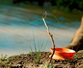 Charleville - Mangalore Warrego River Fishing Spot - Accommodation Directory