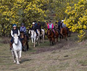Burnelee Excursions on Horseback - Accommodation Directory