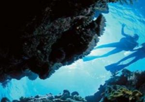 Deep Sea Divers Den - Accommodation Directory